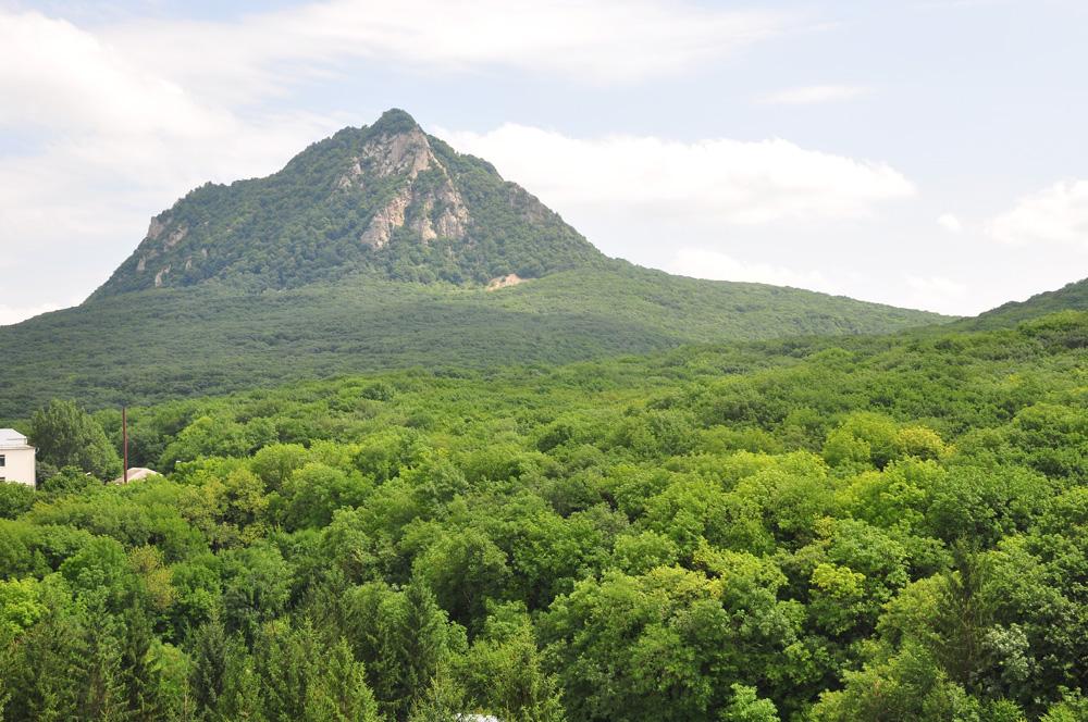 Вид на гору Железная